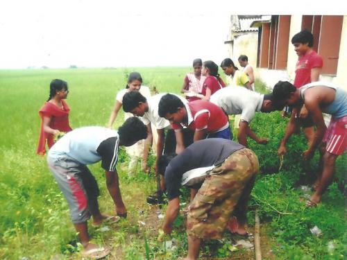 All are engaged in the work of cleaning (1)